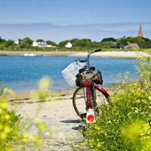 Guernsey in Spring