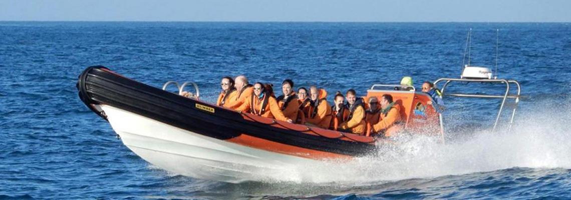 Island RIB Voyages, Guernsey