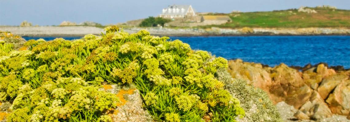 L'eree Bay, Guernsey